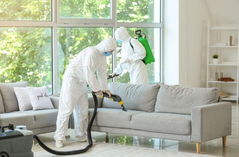 sanificazione casa pulizia divano e soggiorno